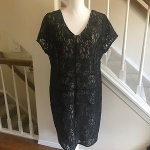 Lane Bryant lace overlay cocktail party dress 18